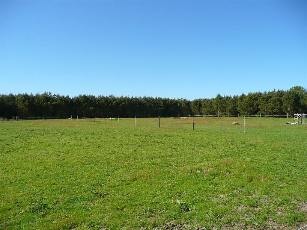 Superbe propriété avec grand terrain pour chevaux