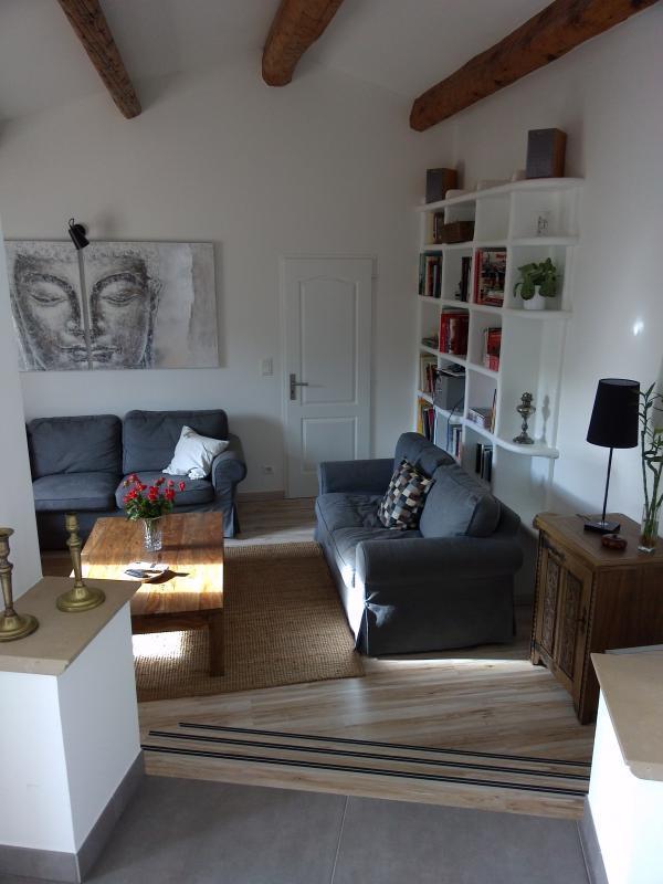 VILLA T6 BRIGNOLES BRIGNOLES , quartier résidentiel , somptueuse villa de plain pied .