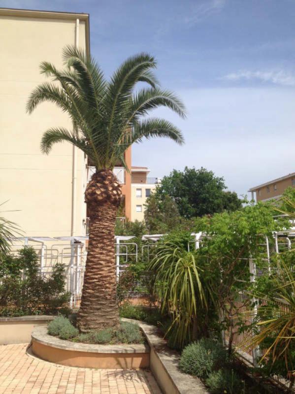 Appartement  T3 PROX LA VALENTINE  13011 Marseille