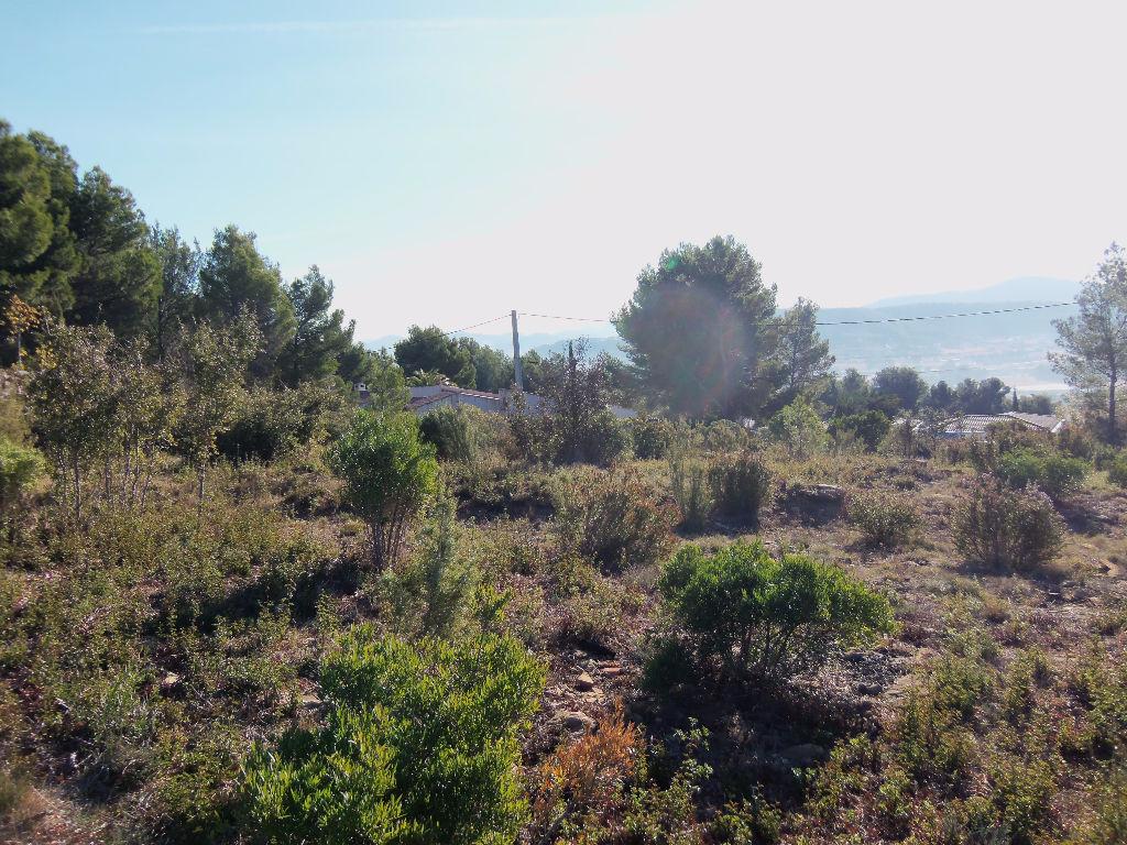 Terrain La Cadiere D Azur 4000 m2 avec aperçu mer et PC accepté